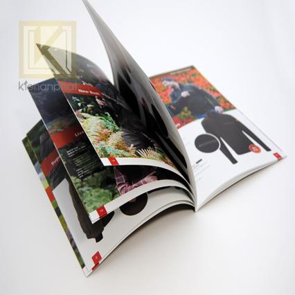 Thiết kế và in ấn catologue tại Kiến An Phát có lợi ích gì